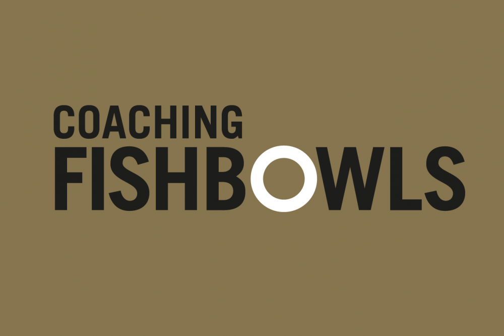 Why should we look into a Coaching Fishbowl?
